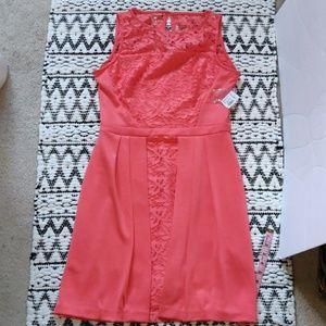 🆕Dressbarn lace dress